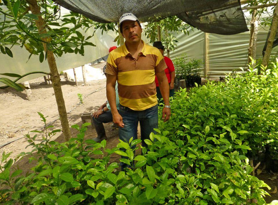 Milton Arcos mit Setzlingen, die auf Auspflanzung warten