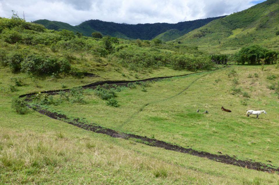 Auch entlang dieses Bewässerungskanals bei Cazarpamba wurden Baumsetzlinge gepflanzt