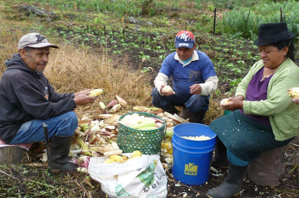 Die Projektbetreiber bereiten ein gemeinsames Essen vor