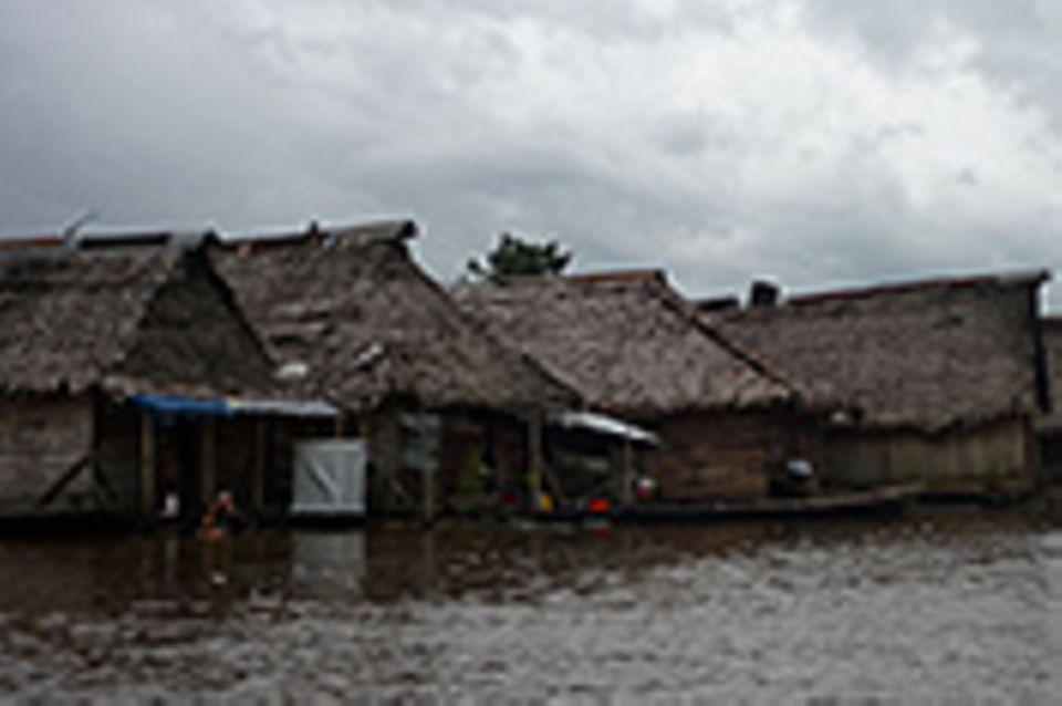 Iquitos, Regenwaldmetropole am Amazonas