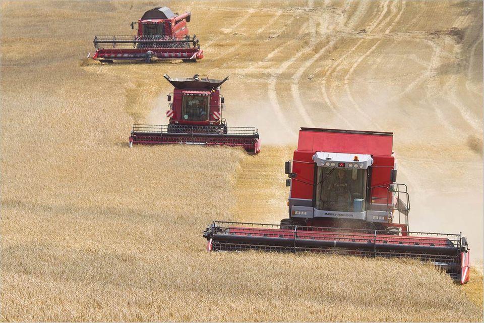 """Interview: Agrarpolitik: """"Landwirtschaft ist ein Thema geworden"""""""