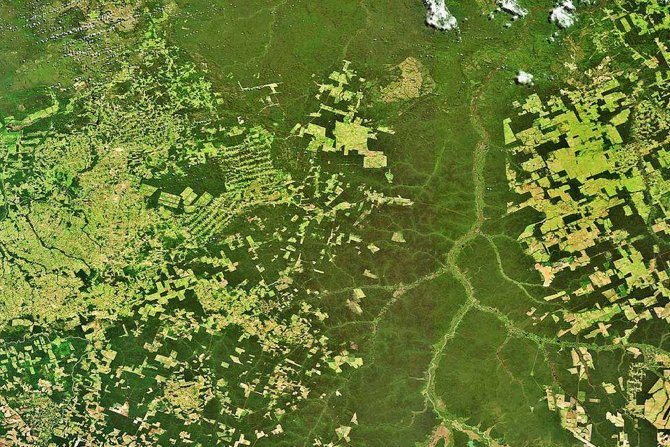 """Satellitenaufklärung: """"Unverzichtbar für den Umweltschutz"""""""