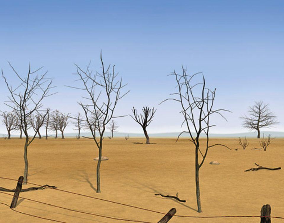Globale Erwärmung: Südspanien in 30 Jahren