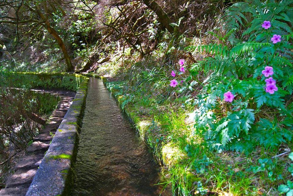 Madeira: Die alten Bewässerungssysteme durchkreuzen Madeira von Nord nach Süd