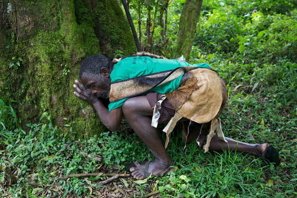 Uganda: Wilson zeigt den Touristen, wie er nach Honig sucht