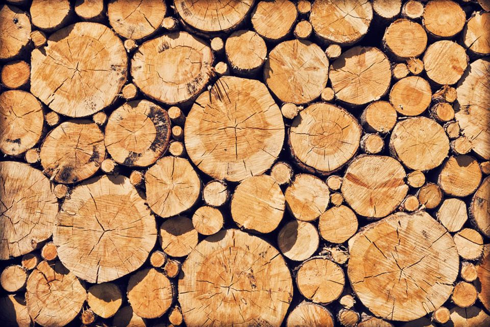Windkraft: Jahrhundertelang war Holz der typische Baustoff für Windräder, die früher freilich keinen Strom erzeugten, sondern Mahlsteine antrieben
