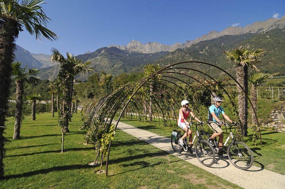 Umweltfreundlich reisen: Der Apfelradweg verfügt über wenig Steigungen und ist damit perfekt für Familien