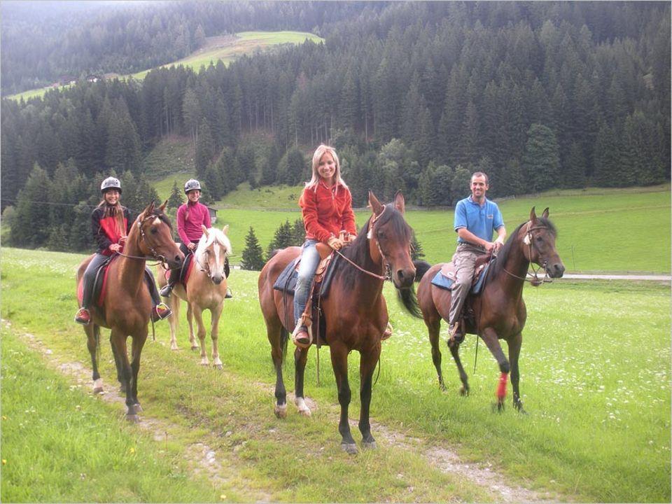 Umweltfreundlich reisen: Pferdefans und solche, die es werden wollen, sollten ins Sarntal reisen
