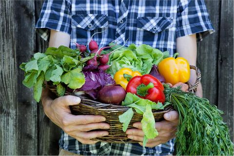 Werkstatt Zukunft: Wie Essensretter Lebensmittel bewahren