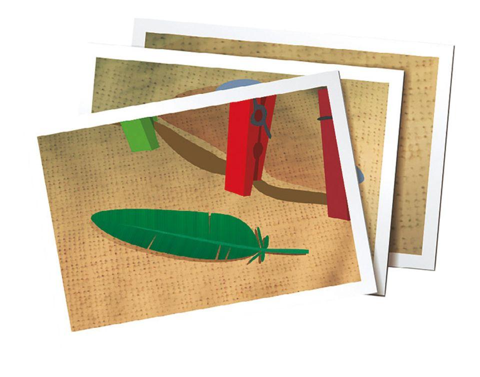 Gewinnspiel: Eine Quetzal-Feder