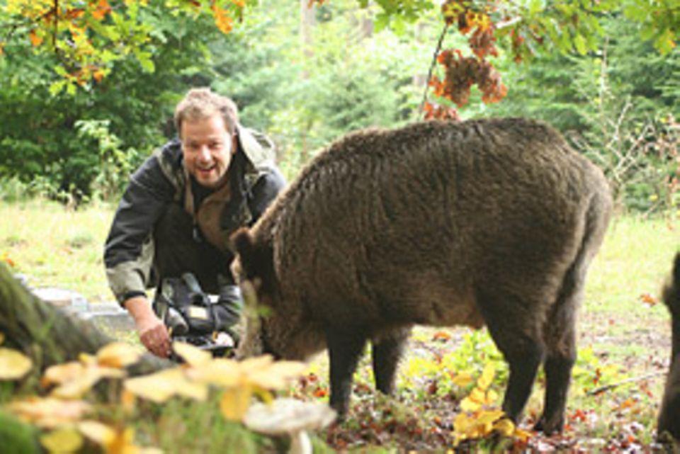 Beruf: Nicht immer hat Jan Haft soviel Glück. Für gute Aufnahmen muss der Naturfilmer oft wochenlang warten
