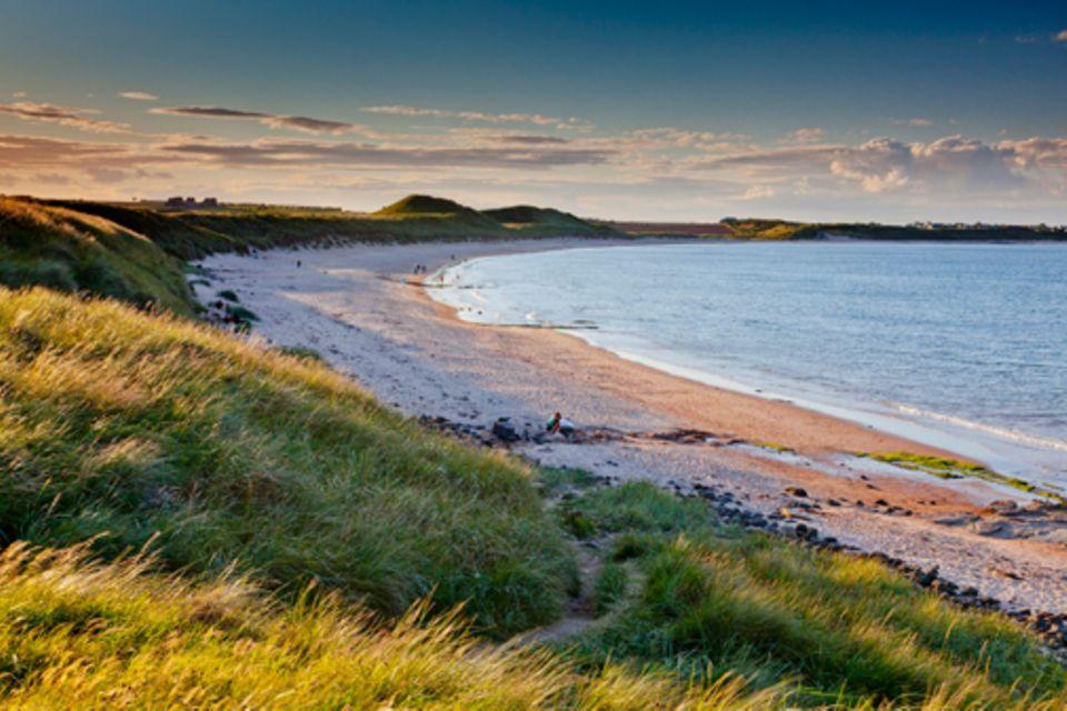 Northumberland: Northumberland ist dünn besiedelt, die Nordsee immer erfrischend - und die Strände eine Wucht