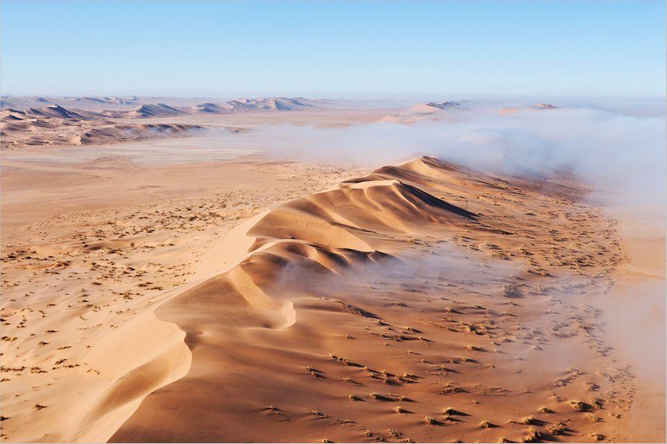 Namibia: Leben spendender Nebel