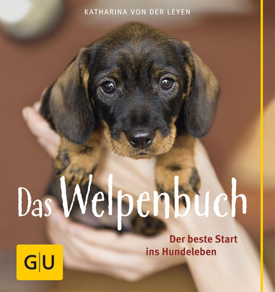 """""""Das Welpenbuch - Der beste Start ins Hundeleben"""" ist ab sofort im Gräfe und Unzer Verlag zu erwerben"""