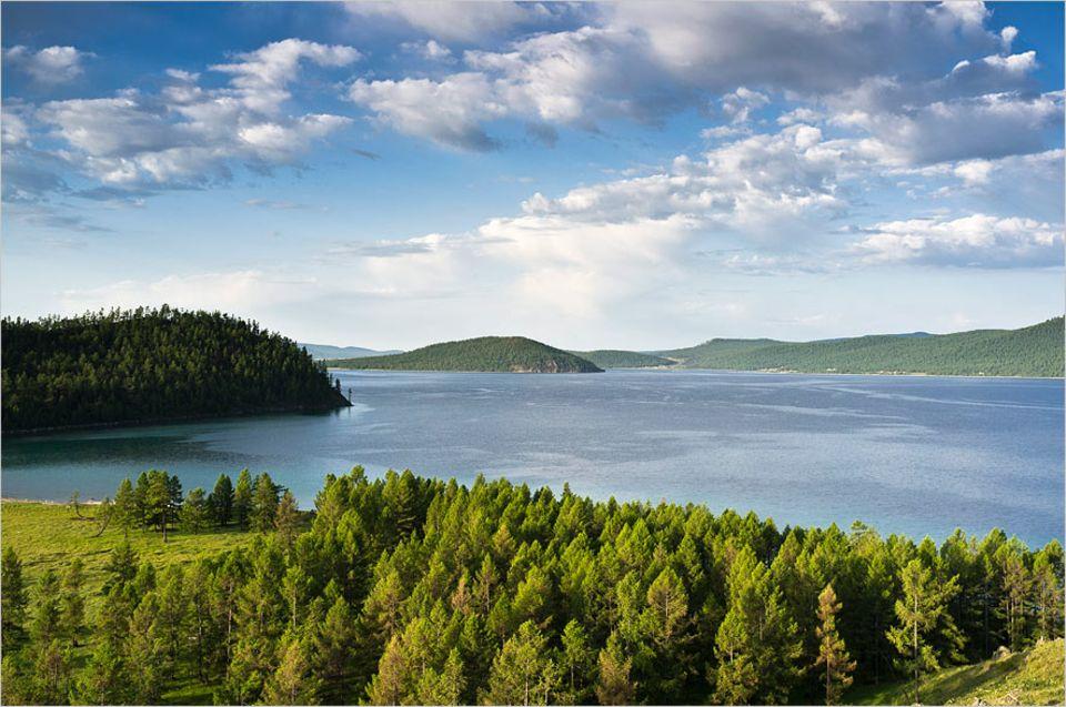 Waldschutz: Lebensraum für Bären und Maralhirsche: der boreale Nadelwald am Khuvsgul-See