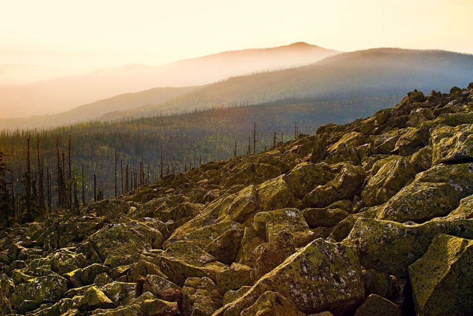 Herbstausflug: Für die Aussicht vom Lusengipfel (1373 Meter) nimmt man den eineinhalbstündigen Fußmarsch vom Ort Waldhäuser gern in Kauf