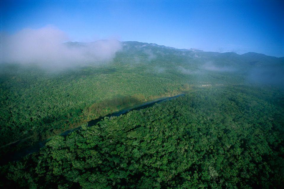 Klimawandel: Die Sierra Madre Oriental ist ein ökologischer Hotspot. Große Teile sind bereits als Schutzgebiete ausgewiesen