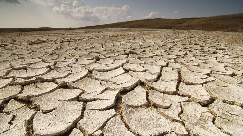 Bodenschutz: Jedes Jahr verschwinden weltweit 24 Milliarden Tonnen fruchbarer Boden. Schuld ist unter anderem der Klimawandel