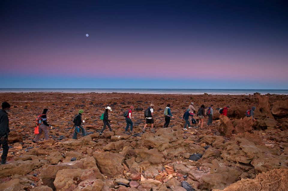"""Erlebnisse in Australien: Jedes Jahr im Juni findet auf der Broome-Halbinsel der """"Lurujarri Heritage Dreaming Trail"""" statt"""