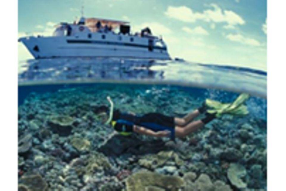 Australien: Abtauchen am Great Barrier Reef