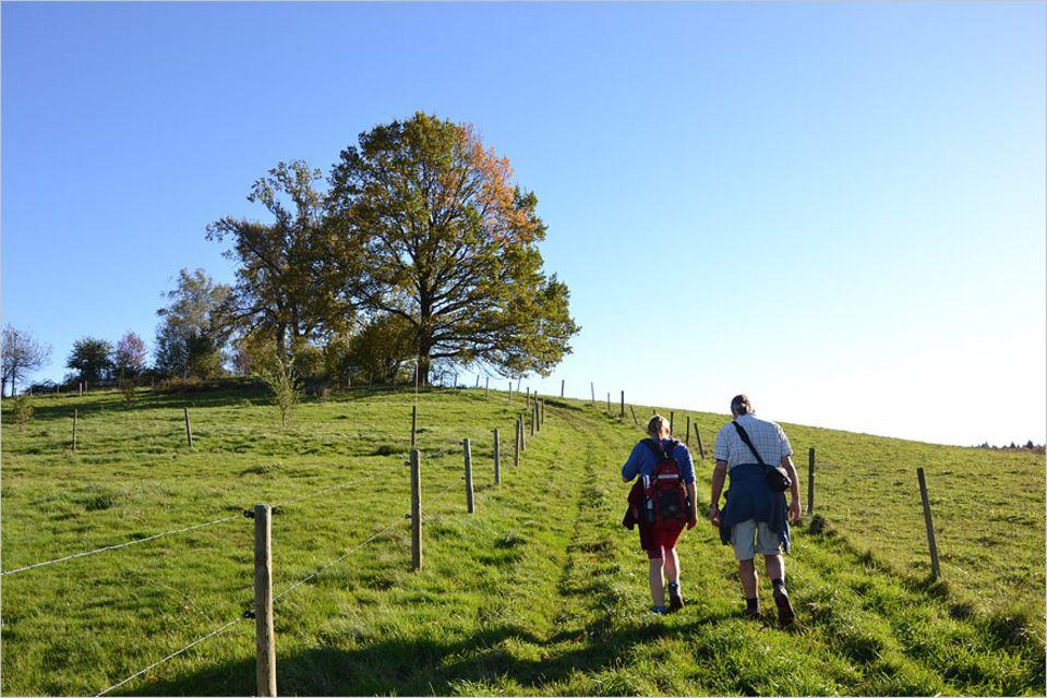 Naturcoaching: Der Weg ist das Ziel: Andreas Hösl beim Einzelcoaching