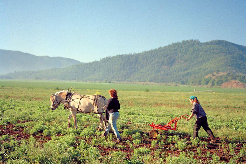 Landwirtschaft 2.0: Bio-Bäuerinnen: Umweltverträgliche Landbewirtschaftung in Kalifornien