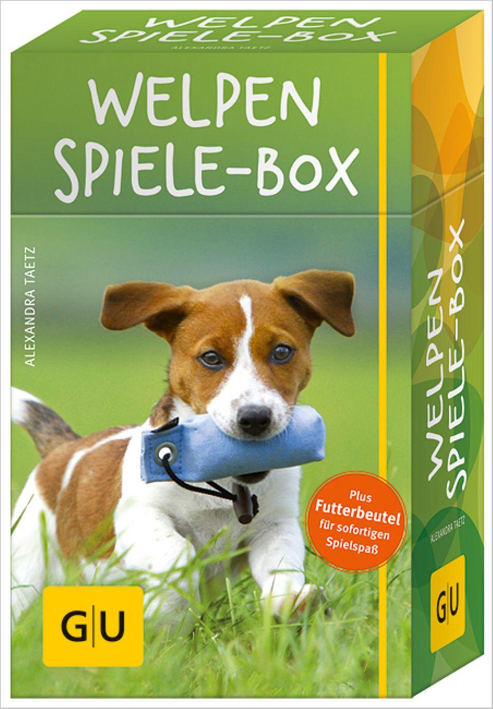 So sieht die Welpen-Spiele-Box aus