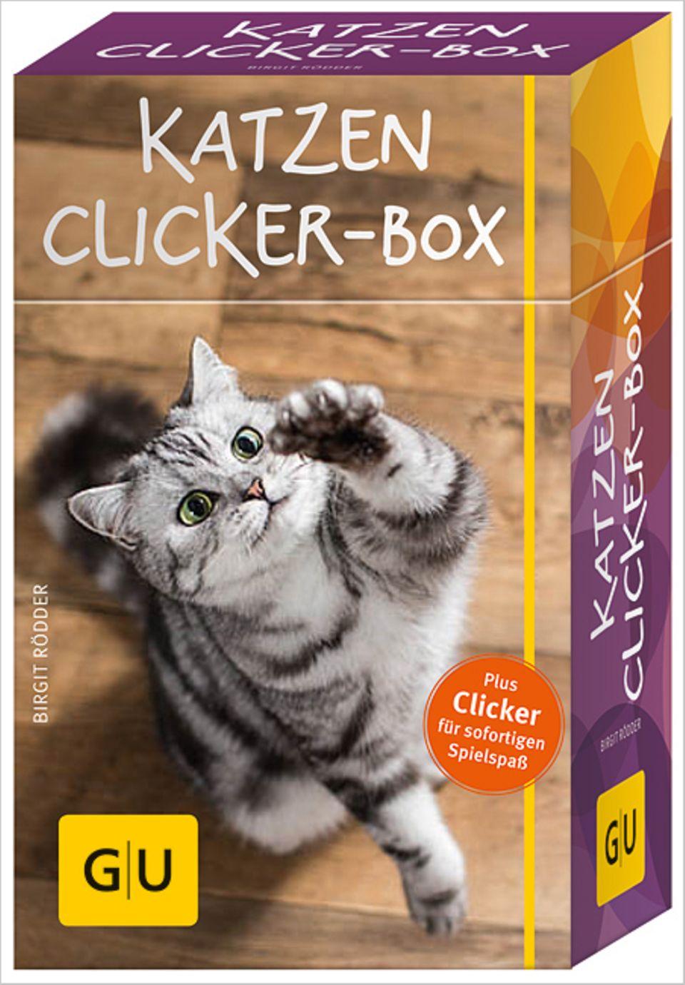 So sieht die Katzen-Clicker-Box aus