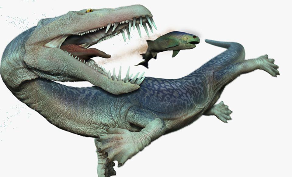 Tierlexikon: Die Krokodil-ähnlichen Nothosaurier konnten an Land und im Wasser leben