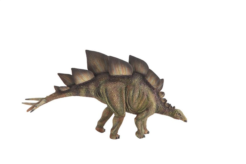 Tierlexikon: Der Stegosaurus