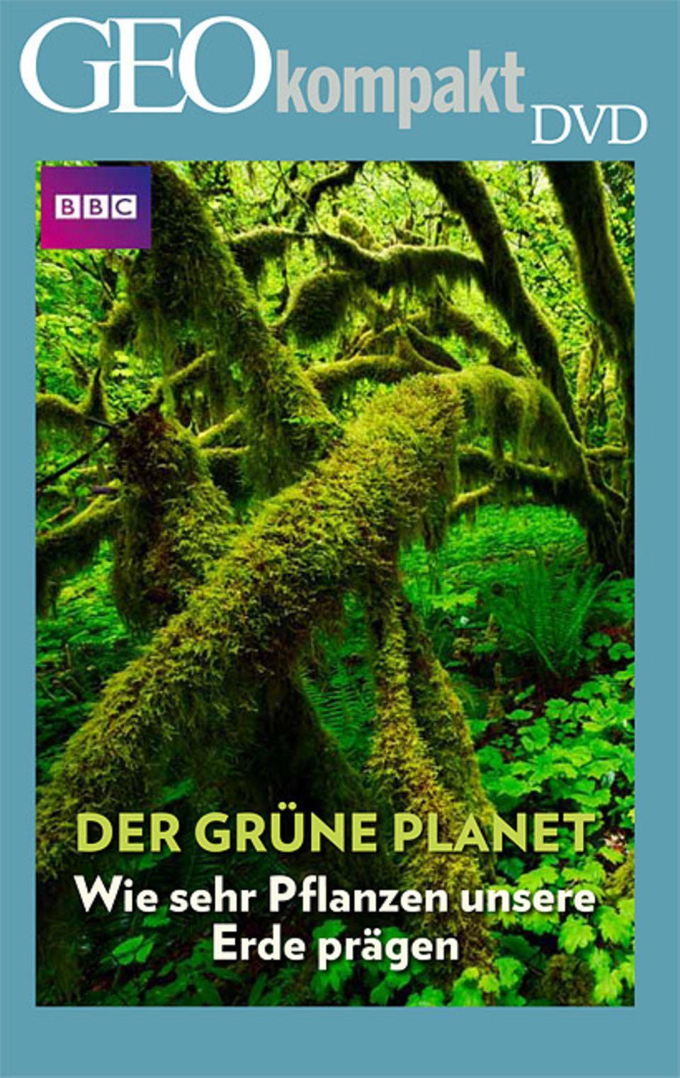 """Pflanzen: GEOkompakt Nr. 38 """"Das geheime Leben der Pflanzen"""" ist auch mit DVD erhältlich"""