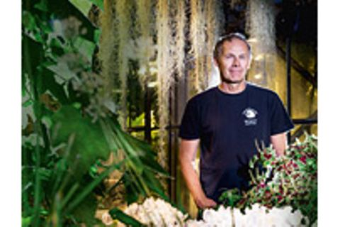 Pflanzen: Interview: Beherrschen Pflanzen die Welt?