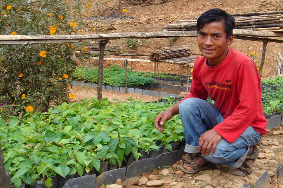 Construcción de viveros, y reforestación con diversidad de especies nativas