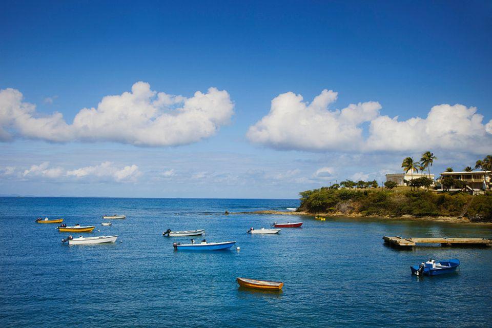 Reisetipps Puerto Rico: Die kleine puertoricanische Insel Vieques überzeugt durch ihre Entspanntheit