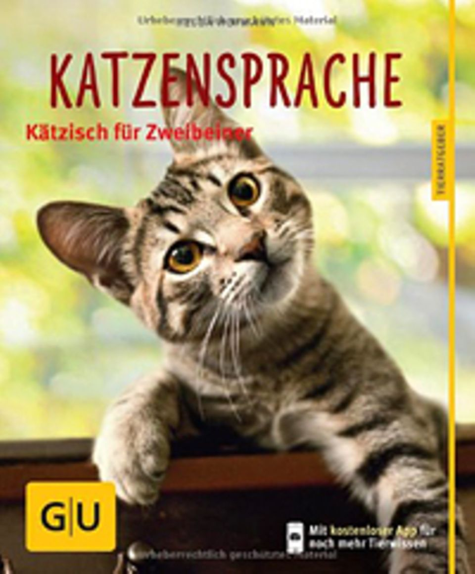 Katzen: Katzensprache verstehen leicht gemacht - dank des neuen Ratgebers aus dem Gräfe und Unzer Verlag