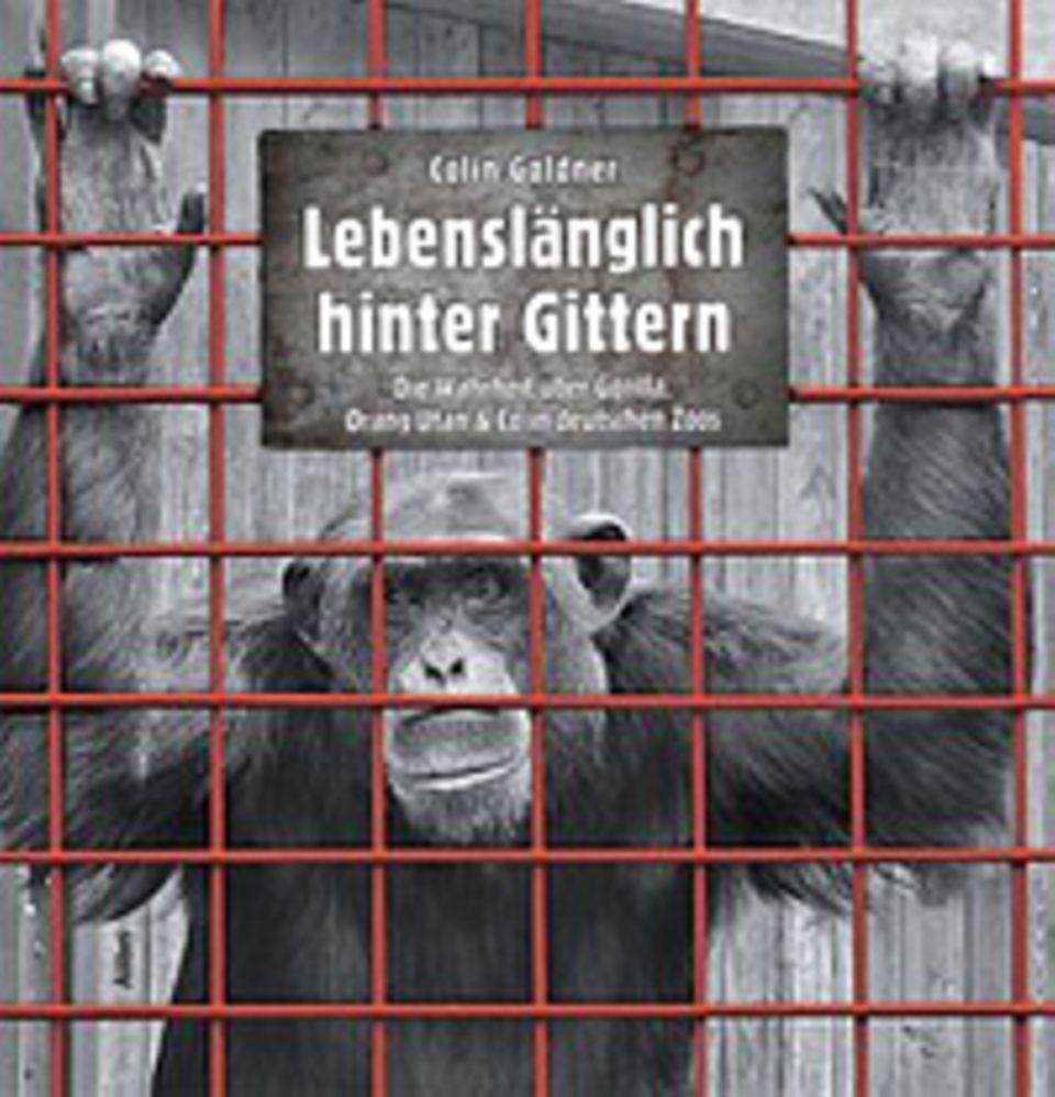 """Tierrechte: Seine Beobachtungen dokumentierte Colin Goldner in dem 490 Seiten starken Band """"Lebenslänglich hinter Gittern"""", erschienen im Alibri-Verlag"""