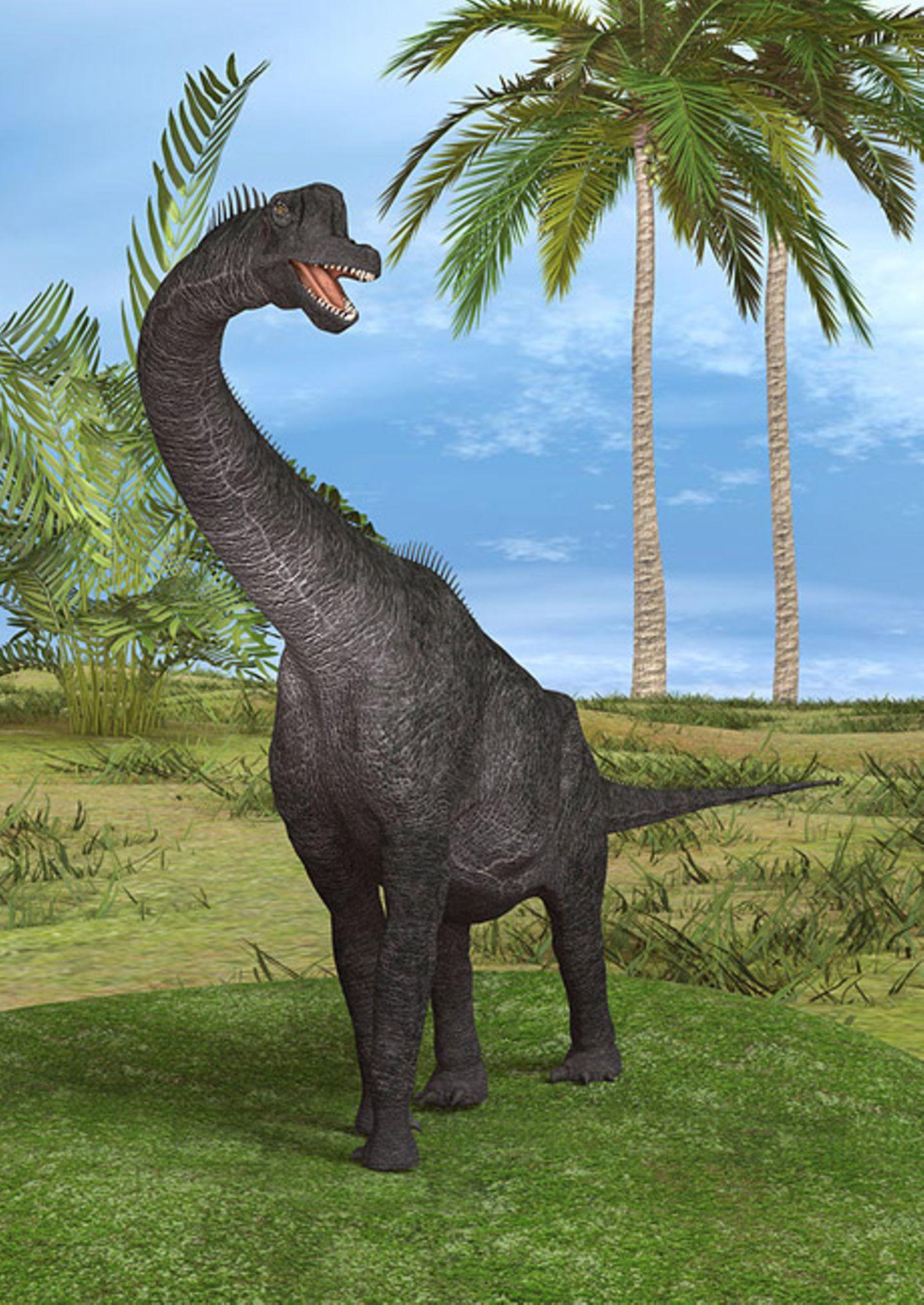 Tierlexikon: Der Brachiosaurus war ein Pflanzenfresser