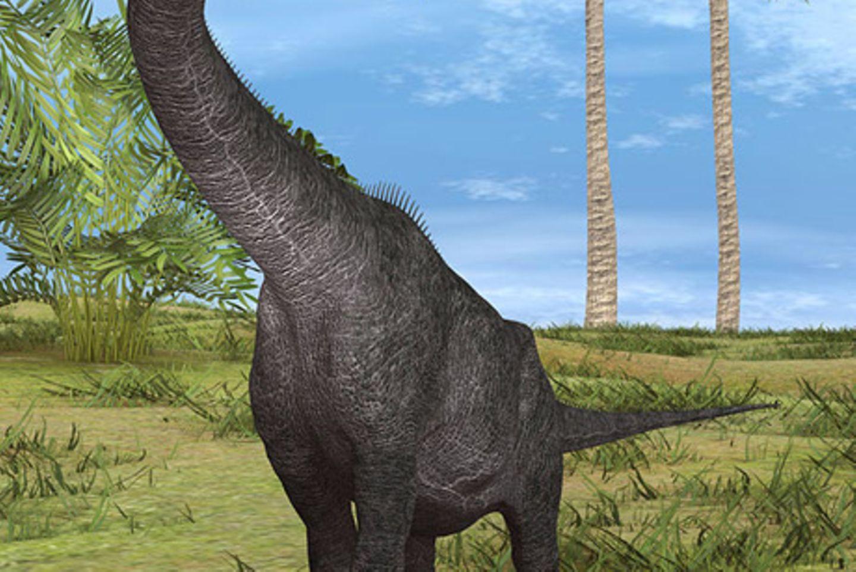 Größte dinosaurier aller zeiten der Fossilien: War