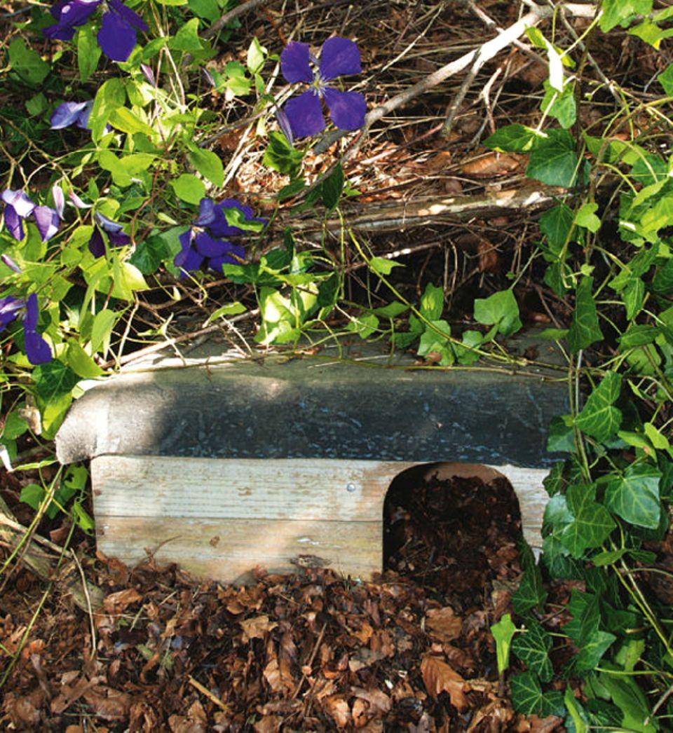 Buchtipp & Anleitungen: Ein schöner Unterschlupf für Igel
