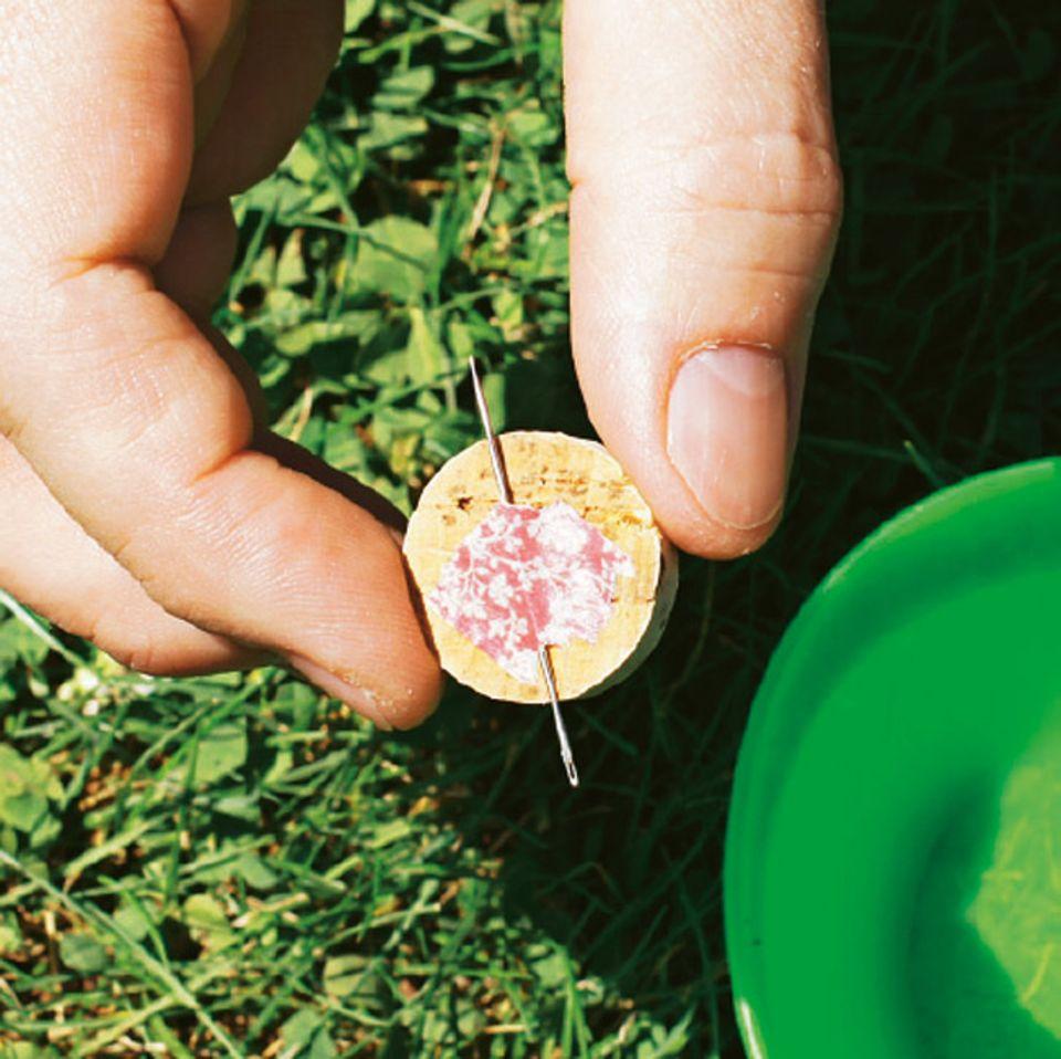 Experiment: Eure Korkenscheibe ist besonders wichtig für euren Nadelkompass