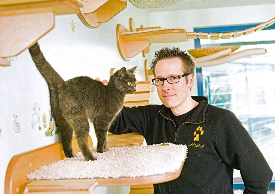Berufe: Stefan Hofmann verkauft selbst gezimmerte Katzenmöbel über das Internet an Katzenfreunde aus aller Welt