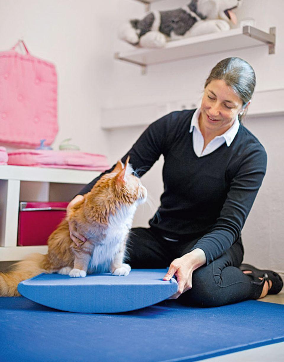 Berufe: Mit Übungen auf der Wippe stärkt Susanne Siebertz etwa nach einem Unfall die Muskeln ihrer Patienten und trainiert deren Gleichgewichtssinn