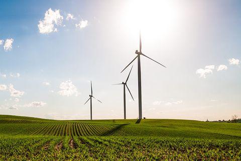 Grüner Strom: Energiewende weltweit