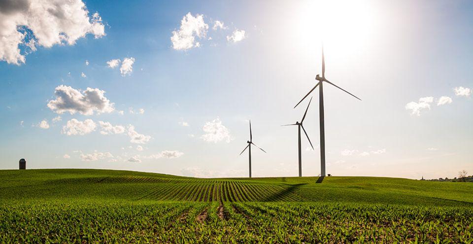 Grüner Strom: Windturbinen in Madison