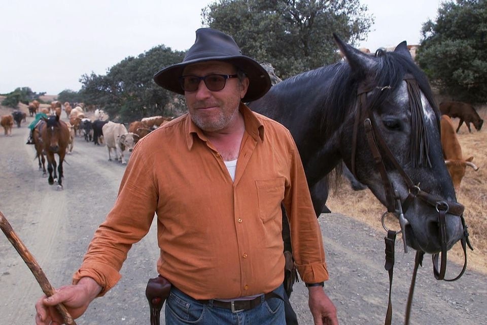 Andalusien – Edle Pferde, wilde Stiere