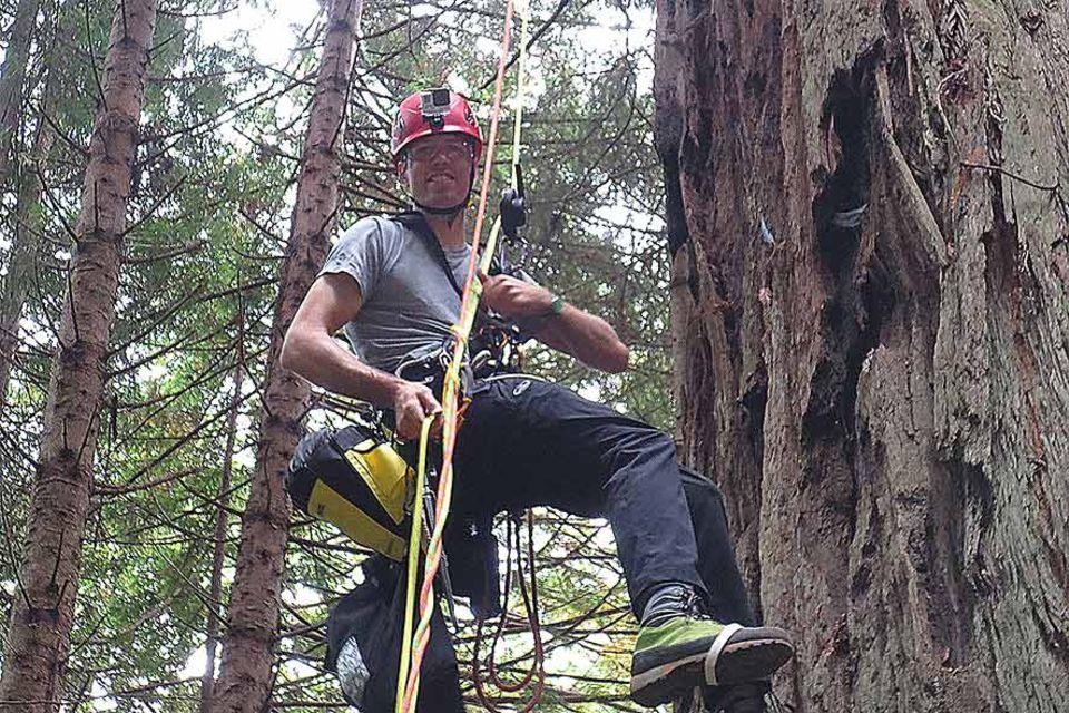Chad Brey ist von dem Betreiber eines privaten Naturparks engagiert worden, um den höchsten Baum des Parks neu zu vermessen. 90 Meter soll er hoch sein