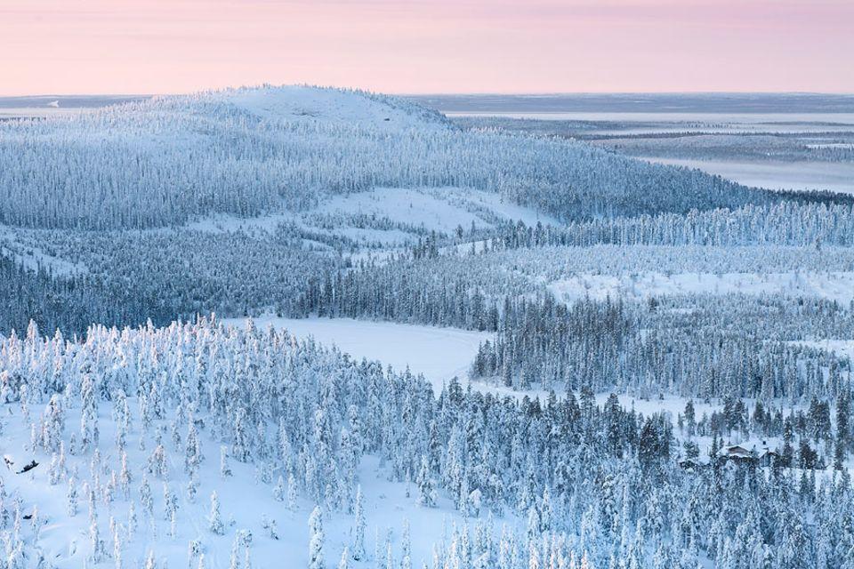 Schweden: In den endlosen Weiten Lapplands lässt sich die Winterlandschaft auf viele Arten entdecken