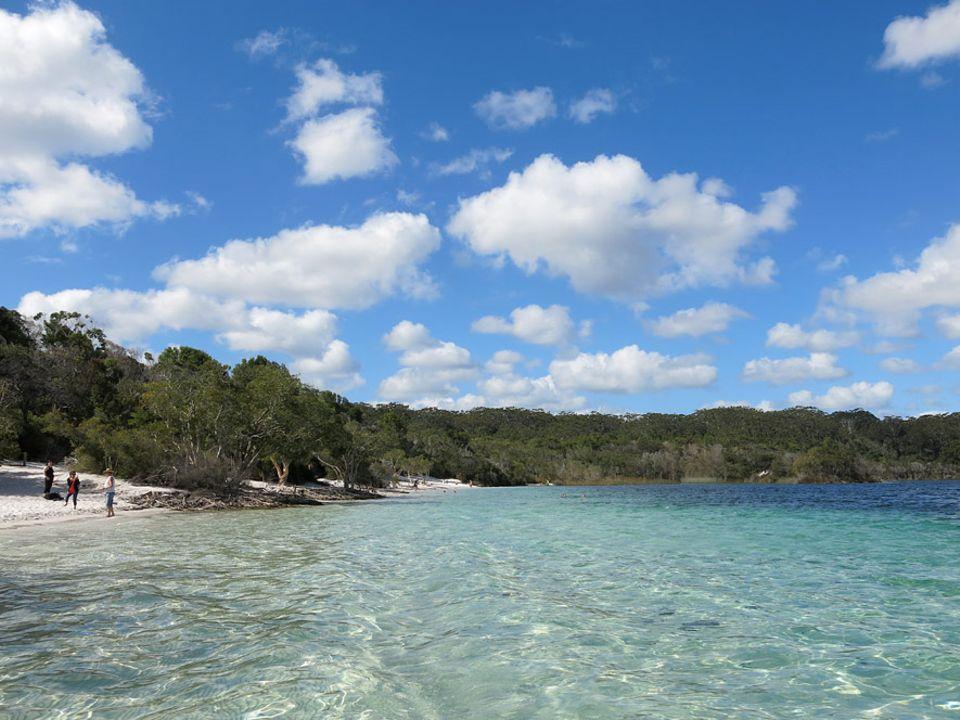 Australien: Lake McKenzie ist einer von vielen Binnenseen auf Fraser Island. Im Gegensatz zum 120 Kilometer langen Meeresstrand kann man hier baden, ohne Haiangriffe zu riskieren