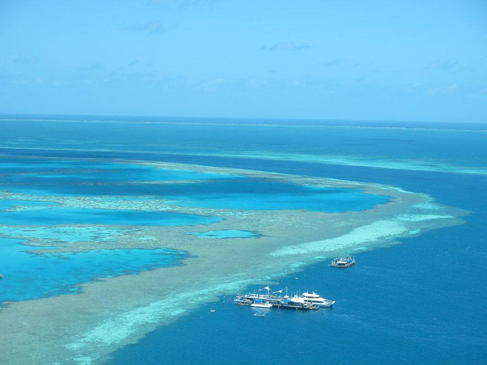 """Australien: Tagsüber schaut man ins Wasser, nachts in die Sterne: Die """"Reefworld"""" ist eine Tauchplattform mitten im Great Barrier Reef. Nach Sonnenuntergang wird das Oberdeck zum exklusiven Zeltplatz"""