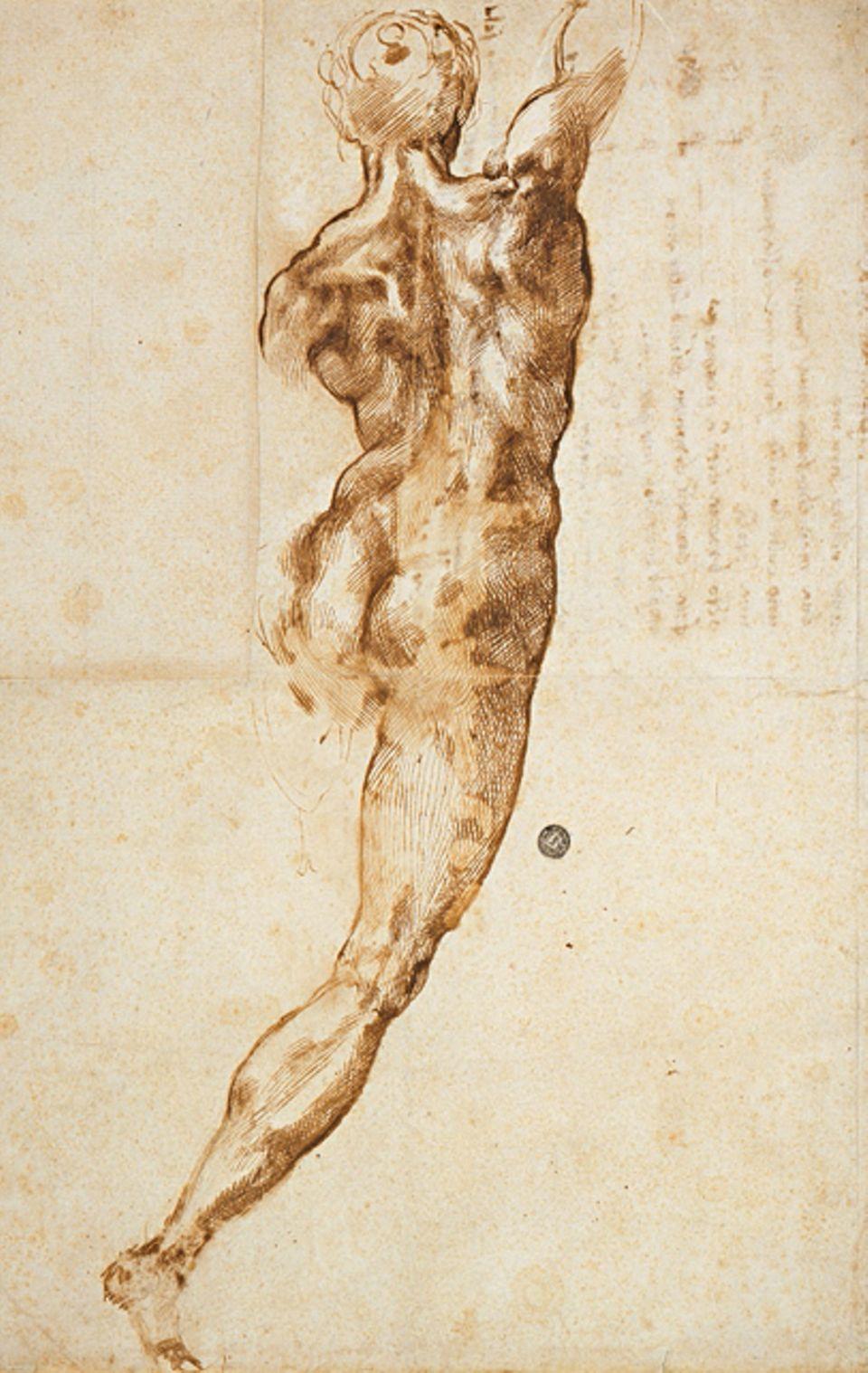 """Portfolio: """"Nackter in Rückenansicht"""": Auch als Zeichner überragt Michelangelo die Künstler seiner Zeit. Seine Figuren sind anatomisch so präzise, dass Konkurrenten 1529 in sein Atelier einbrechen und etliche seiner Zeichnungen stehlen (Skizze für ein Schlachtengemälde, um 1504)"""